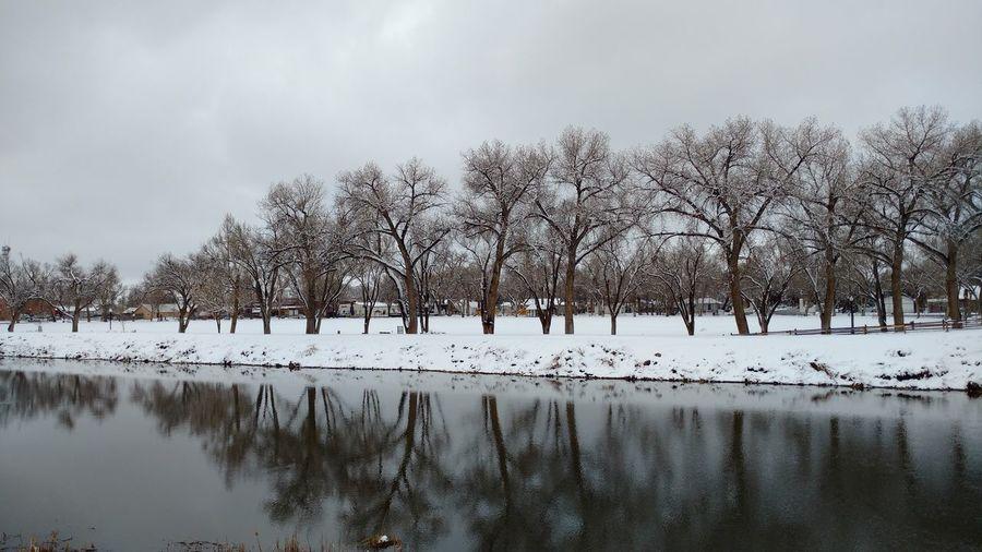 looking across the Rio Grande at Cole Park, Alamosa, Colorado Taking Photos Nature's Diversities