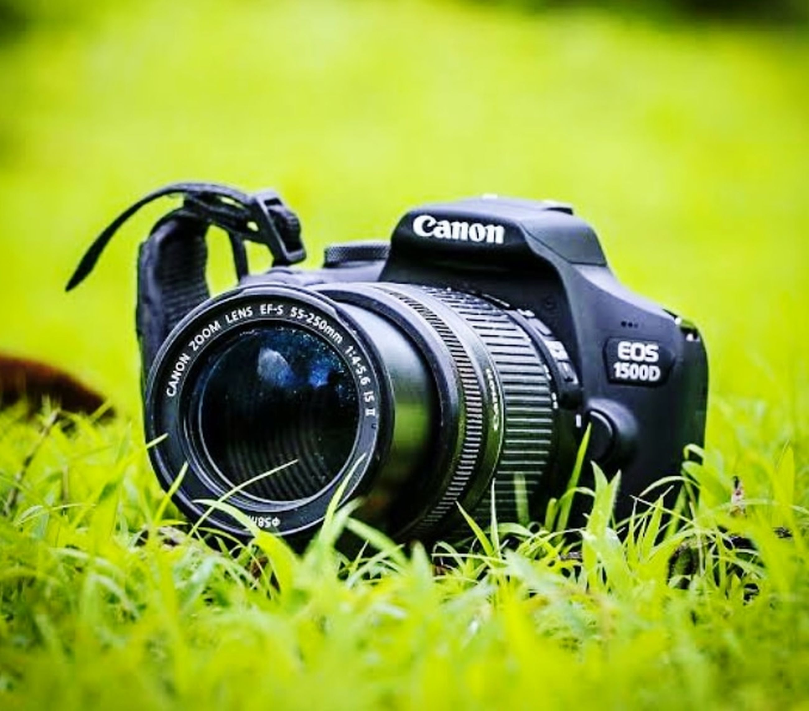 green, camera, grass, technology, lens - optical instrument, photographic equipment, plant, digital slr, yellow, activity, photographing, lens - eye, close-up, camera lens, retro styled, selective focus, lawn, field, no people, nature, day, single object, outdoors, black, land