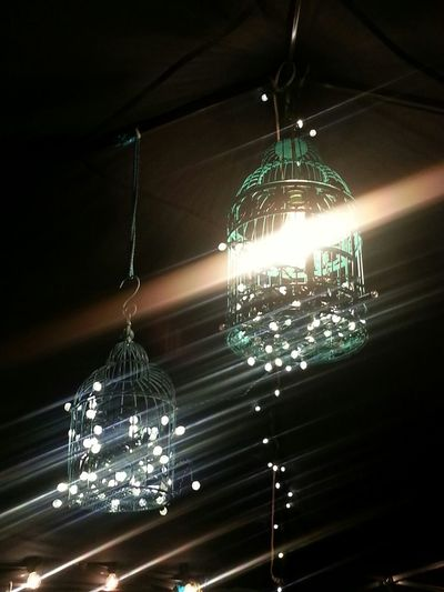 Arts Goggle 2013 Living Life Throught Art! Shine On! Vintage Love Love these Vintage Bird Cages w/ Lights!