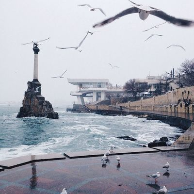 🌊🌊🌊 Water Nature Bird Cold Temperature No People First Eyeem Photo