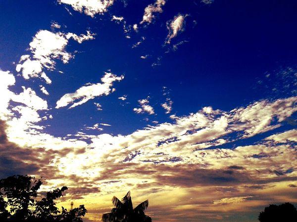 Veja o sol dessa manhã tão cinza... (8) Hello World Vegging Out Relaxing Enjoying Life