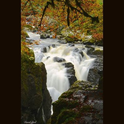 """River Braan. ISO 100, f22. 8""""sec. Ig_shutterbugs Naturelover_gr Nature_sultans Nature_shooters Ig_captures Ic_water Waterfall Princely_shotz Ig_supershots Igbest_shots Naturelover_gr Bnwscotland Bnwscotland Bnw_captures Loves_Scotland Master_shots Special_shots Splendid_shotz Ig_bliss Srs_nature Majestic_earth Ig_scot Ic_water"""