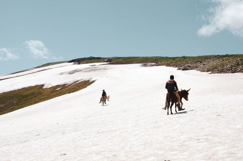People riding horses on snow covered field