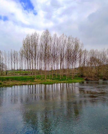 River Sky Water Tree Cloud - Sky Plant Reflection Lake Tranquility Waterfront Nature Day Beauty In Nature Tranquil Scene No People Scenics - Nature Outdoors
