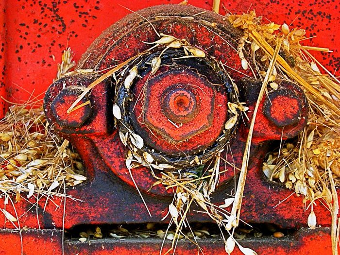 Mechanic Mecanique Seeds Graines Rust Rouille Red Rouge Harvester Moissonneuse