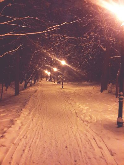 Winter Love Snow Very Beautiful Night Photography