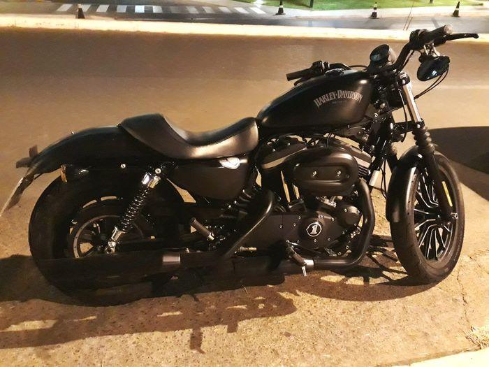 Haley Davidson Motorcycle Land Vehicle Stationary Vehicle