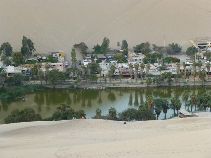 Water Built Structure Building Exterior Architecture Tree Nature Plant Day Building Land City Lake No People Outdoors Beach Scenics - Nature Residential District Beauty In Nature Sand Oasis Oasis In The Desert