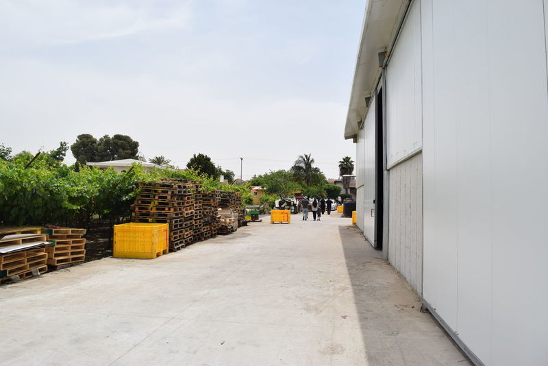 Architecture Building Exterior Built Structure City City Life Cloud Cloud - Sky Day Diminishing Perspective Empty Factory Footpath Growth In A Row Industrial Manufacturing Narrow Nature No People Outdoors Sky Storage The Way Forward Vanishing Point Walkway