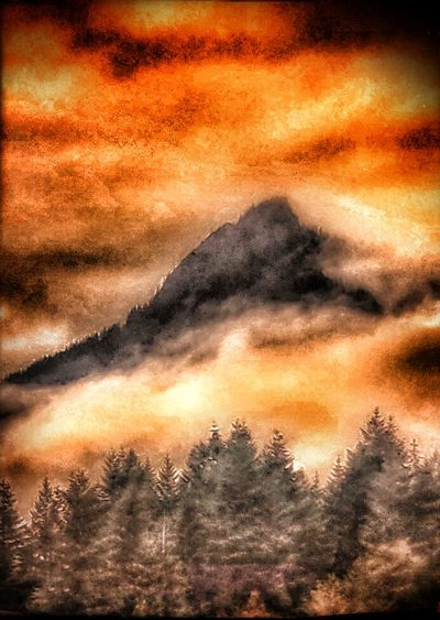 fire in the Washington sky Washington State Fire - Natural Phenomenon Forest Fire Smoke Smoke Fire Light Tree Sunset Mountain Backgrounds Full Frame Abstract Orange Color Dramatic Sky Sky Close-up Atmospheric Fumes Heat
