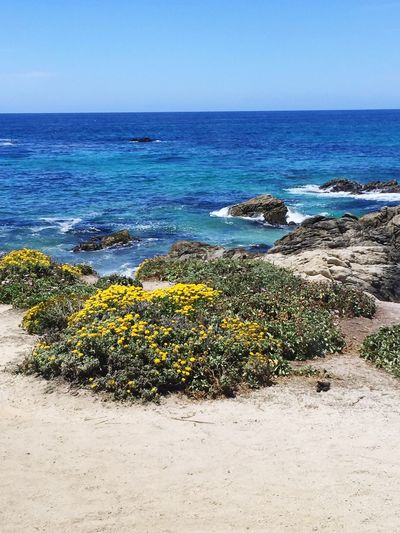 Blue Waves Beach Ocean Coastline Rocks The Essence Of Summer