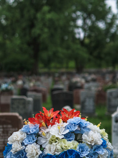 Close-Up Of Flowers In Cemetery