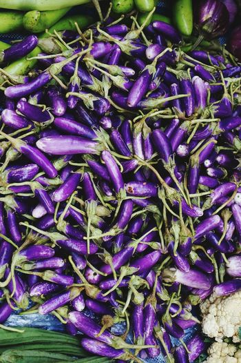 Backgrounds Flower Full Frame Market Vegetable Purple Close-up Farmer Market Fish Market Crocus Stall Eggplant Fishes For Sale Street Market Market Stall Raw Dried Fish  Crushed Ice Mango Fishing Industry Various Display Squid Market Vendor Flower Market Shop Retail Display Price Tag