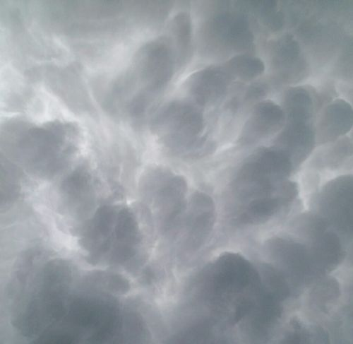 Mammatus Clouds Gray Full Frame Outdoors Day Sky