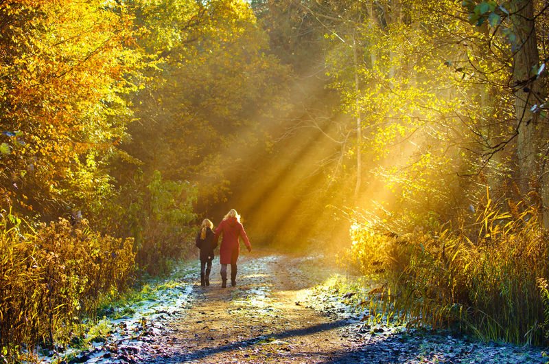 Sunbeam Forrest Walking Enjoying Life Nature Nature_collection Outdoors Dirt Road Hiker Country Road Countryside Treelined