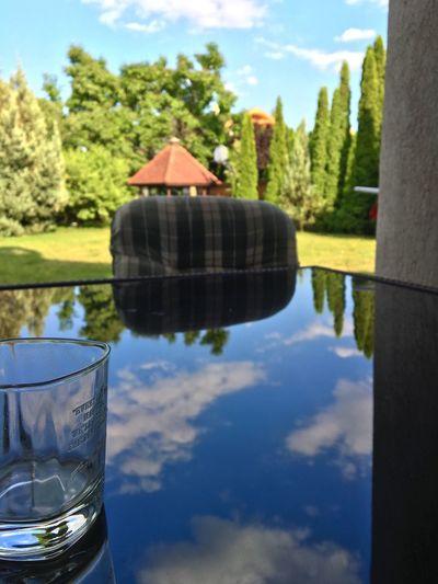 Nice Day Garden Focus Glass Best EyeEm Shot Enjoying Life Feeling Good Better Look Twice