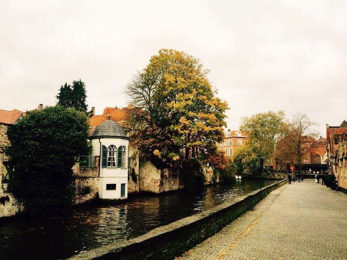 Canal Belgianautumn Outdoors Building Exterior Trees And Water Tree_collection  Brugge, Belgium Travel Destinations Travel Photography No People MedievalTown