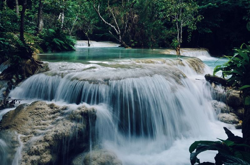 Kuang Si Falls Tranquil Scene Tranquility EyeEm Nature Lover EyeEmNewHere VSCO Photographer Photography Photo Nikonphotography Nikon Landscape_photography Landscape Waterfall Long Exposure Motion Water Flowing Water Beauty In Nature Nature Outdoors Scenics Tree Growth No People Forest Blurred Motion
