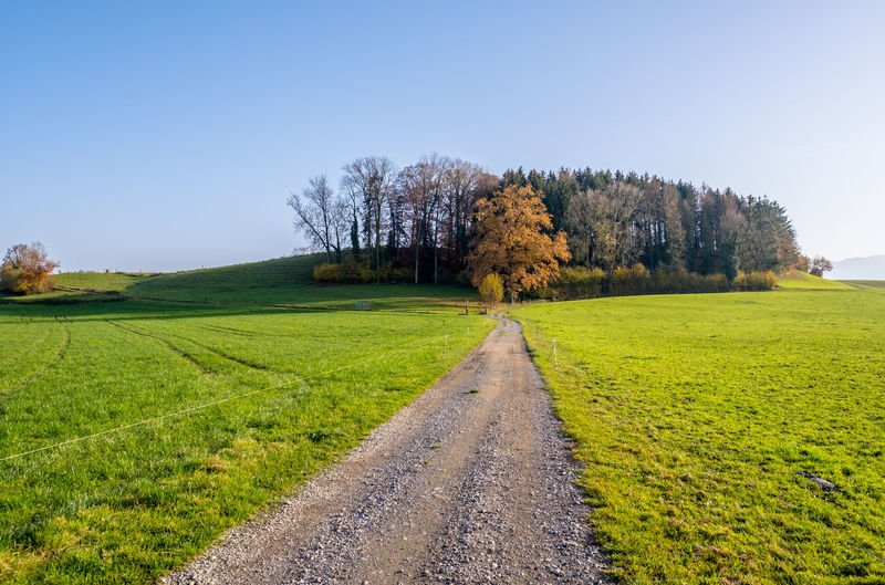 Road amidst field against clear sky during autumn
