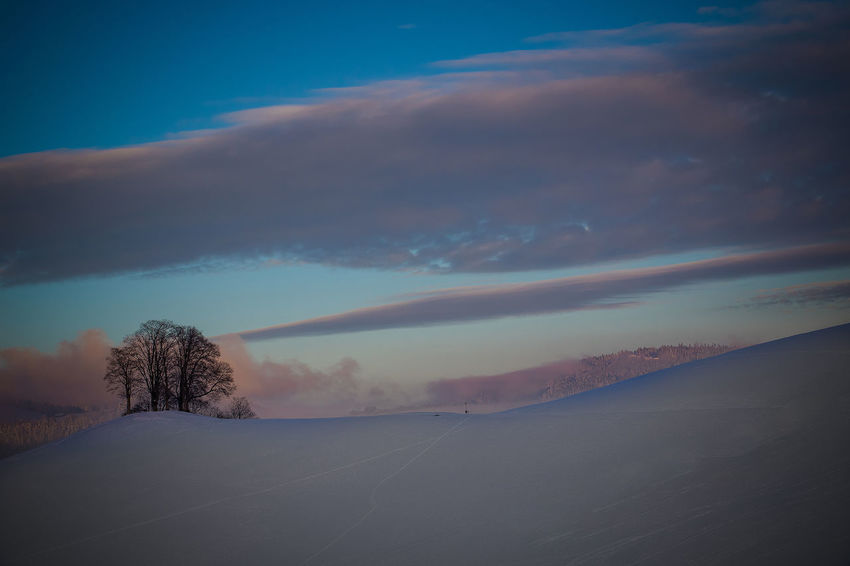 winter landscape Beauty In Nature Cold Temperature Day Landscape Nature No People Outdoors Road Scenics Sky Snow Tranquil Scene Tranquility Winter