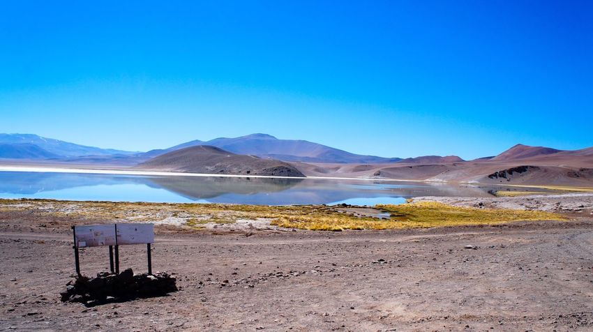 Atacama / Chile 🇨🇱 Laguna santa rosa Blue Nature Water Sand Mountain Clear Sky Copy Space Landscape Tranquility Beauty In Nature Tranquil Scene Scenics Desert No People Day Outdoors Salt - Mineral Beach Arid Climate Sky