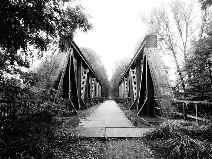Lost Bridge - Man Made Structure Bridge Tree The Way Forward Connection Architecture No People Outdoors Built Structure Day Footbridge Sky Lost Places Lostplace black Blackandwhite Black And White Friday