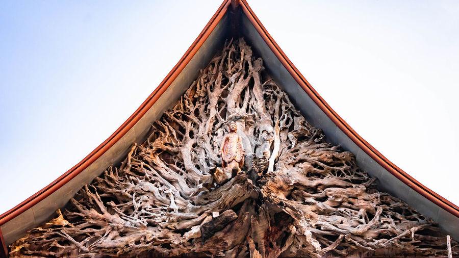 Shape Wood Tree