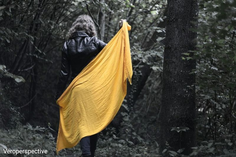 Your past does not determine who you are. Your past prepares you for who you are to become. The Following Yellow Trees Follow Photos Around You Photography Is My Escape From Reality! Enjoying Life Passion Photographer Freedom Freedomthinkers Free Spirit