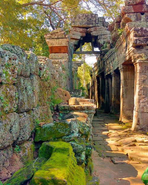 Temple in Cambodia Art Is Everywhere Day Built Structure Architecture No People Outdoors Nature Travel Photography Landscape Backpacking Follow4follow Eye4photography  Backpacker Followforfollow EyeEm Nature Lover EyeEm Best Shots Nature Tree Cambodia Temple Religion