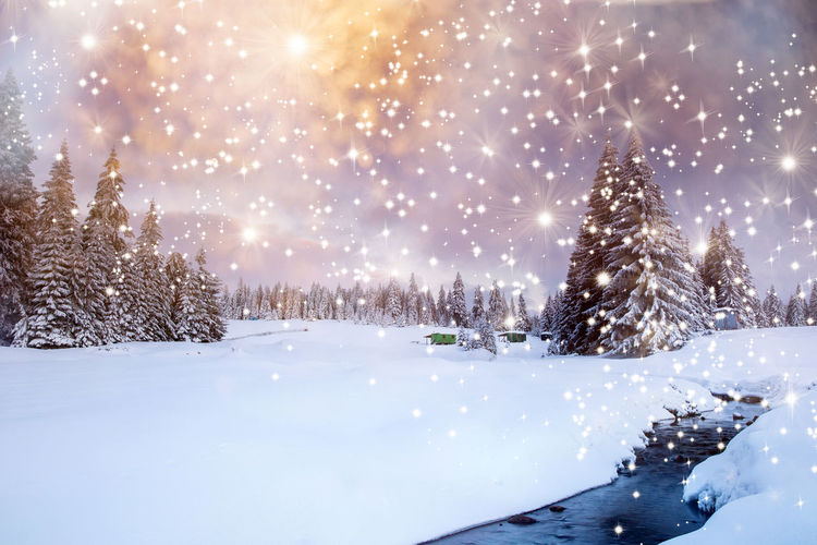 Scenic view of snow covered tree against bright sun