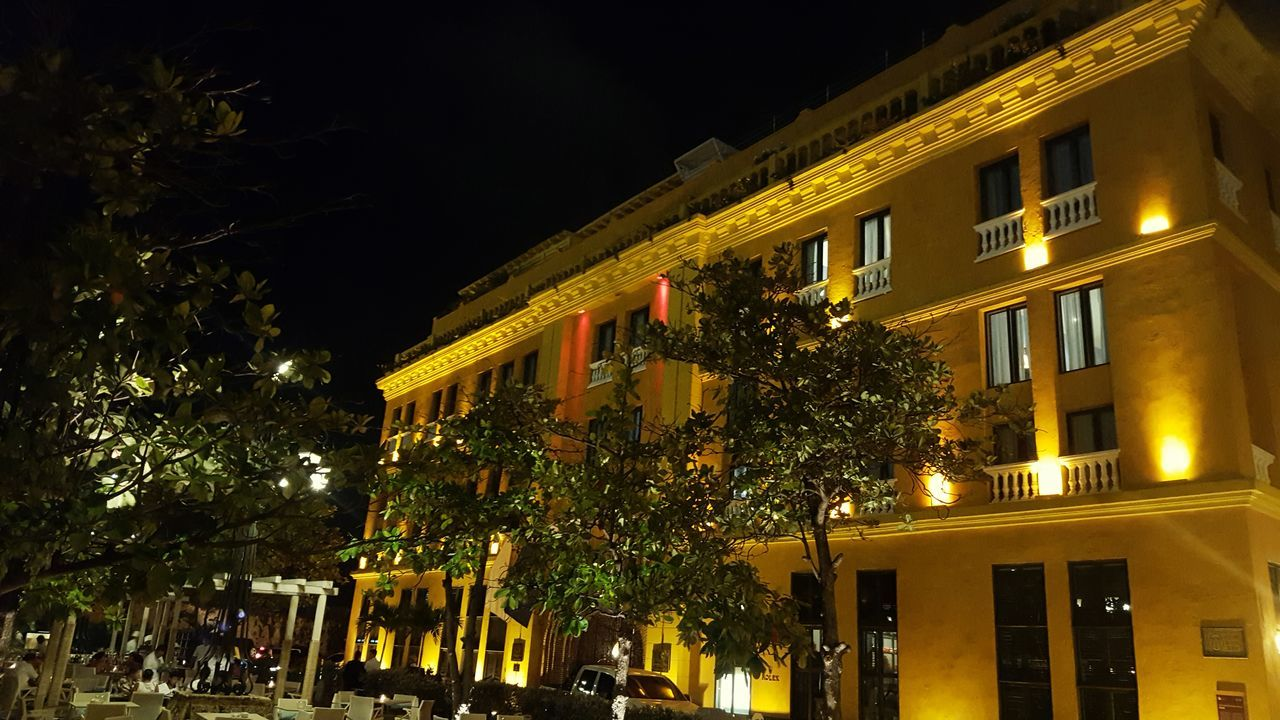 illuminated, night, architecture, building exterior, built structure, low angle view, no people, outdoors, tree, city, sky