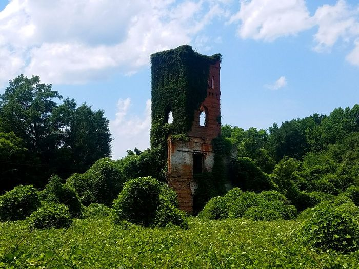 Architecture Green Color Building Exterior Nature Outdoors No People BYOPaper! Enjoying Life Hello World Abandoned Abandoned Buildings Nature Abandoned And Beautiful Eeyem Photography Old Buildings Old Ruin Abandonedbuilding Architecture Built Structure Sky Nature Photography Tree Growth