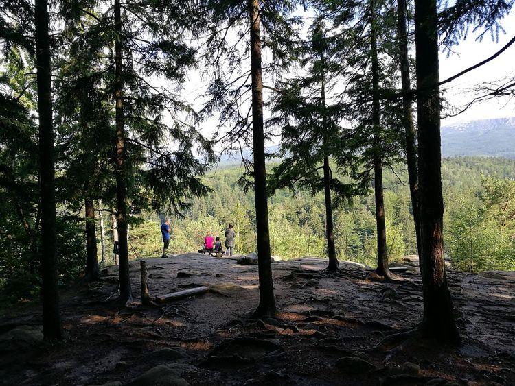 Poland Szklarska Poręba Landscape Mountain Huawei P9. Tree Outdoors Day Sky Nature Beauty In Nature People