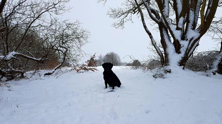 Snow Winter Cold Temperature Full Length Children Only One Person Child