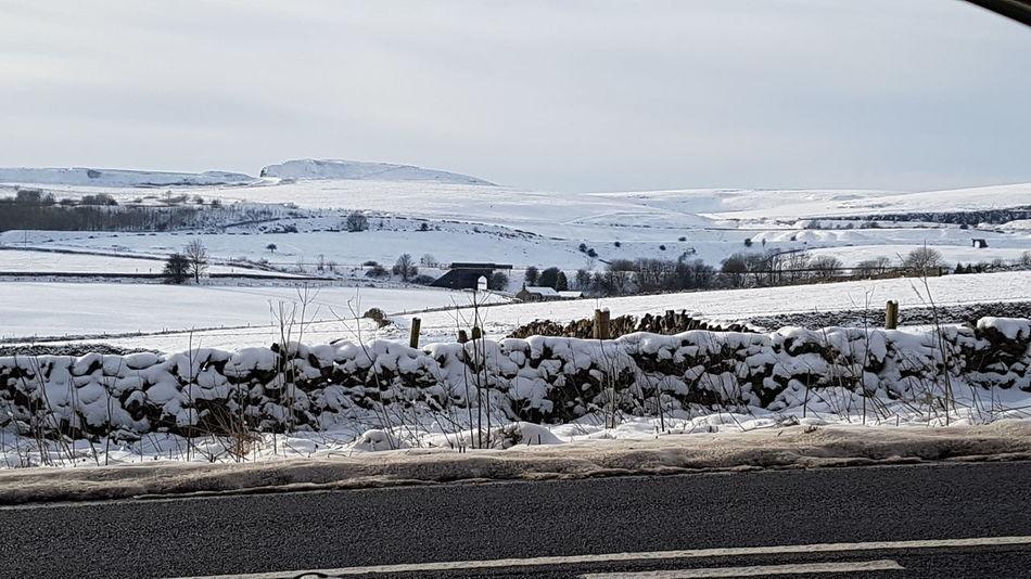 Cold Temperature Snow Polar Climate Winter Landscape Frozen Outdoors