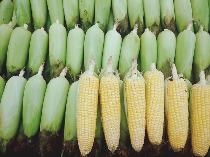 High angle view of corns at market stall
