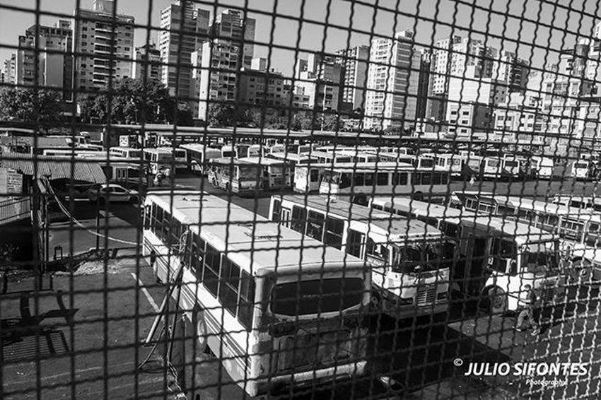 Jungla de cemento. Fotocrafiandoconelcorazon IG_Venezuela Instafoto_ve LOVES_BESTHDR World_great Ig_caracas Ig_valencia Elnacionalweb Great_captures_venezuela Ig_venezuelan_pro Venezuela_estrella Caracas Great_captures_venezuela IG_GRANCARACAS Venezuelaestrella Love_caracas InstaLOVEnezuela Caracas_Estrella World_bnw