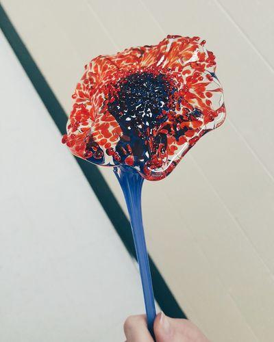 Close-up of hand holding umbrella