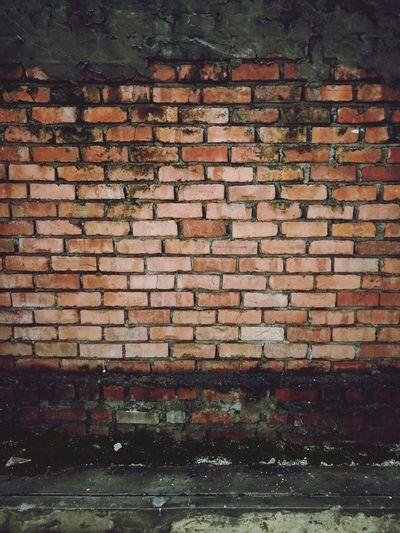 Wall Textures Wall Wallbrick Brick Brick Wall Moss Mossy Text Penang Malaysia Love To Take Photos ❤ The Street Photographer - 2017 EyeEm Awards