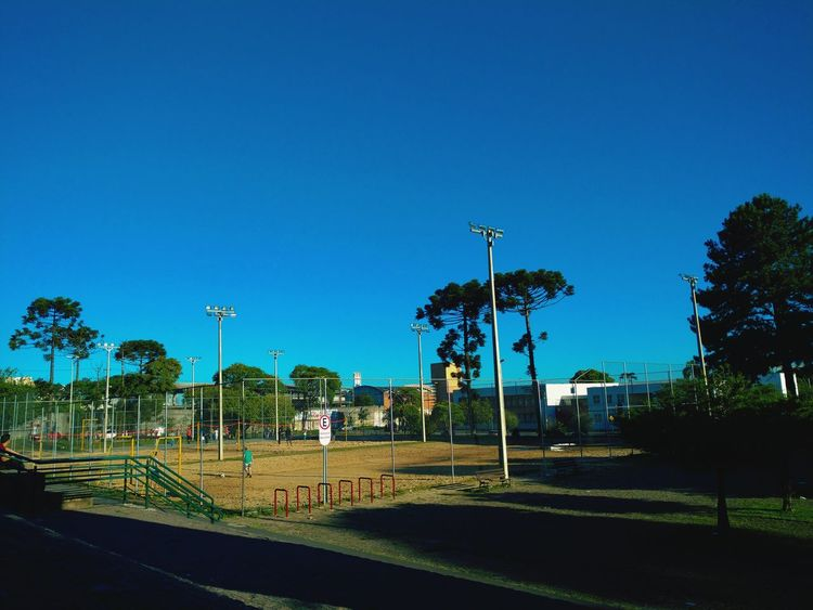 📸 Sport Blue Playing Field Soccer Tree Sky No People