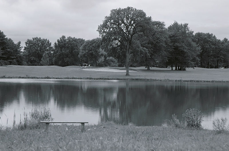 Beauty In Nature Black And White Calm Cloud Countryside Day Golfcourse Goodwin Park Hartford Jasmin Hrnjic Lake Lakeside Majestic Nature No People Non-urban Scene Reflection Scenics Sky Solitude Standing Water Tranquil Scene Tranquility Tree Water