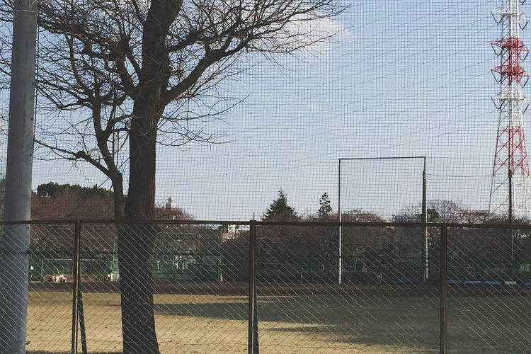 Tree Fence Chainlink Fence Outdoors No People Day Sport Sky Nature Architecture Baseball Field 夕暮れの野球場 鹿沼公園