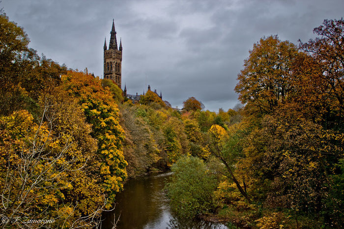 Architecture Baum Escocia Glasgow  GlasgowUniversity Kelvingrove Park Leaves Nature No People Old Buildings Outdoors Panorama Park River Schottland Scotland Tower Tree Trees Turm University