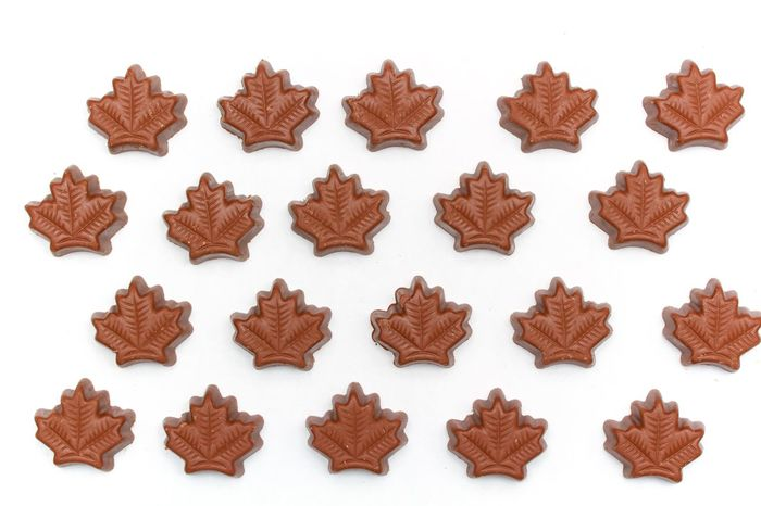 maple leaves chocolate truffles on white background/ canada Brown Canada Chocolate Homemade Maple Leaves Studio Shot Sweet Food Truffles White Background
