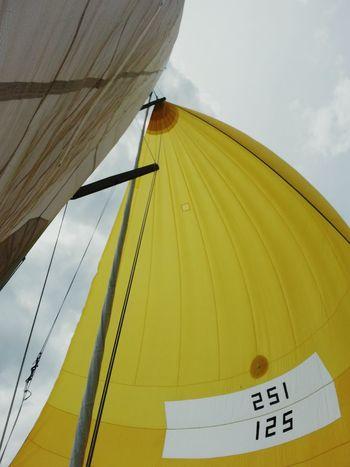 St Johns River Sailing Day Sails Mast Jacksonville Florida Sailboat Sail Away, Sail Away Sailing Yellow Sail