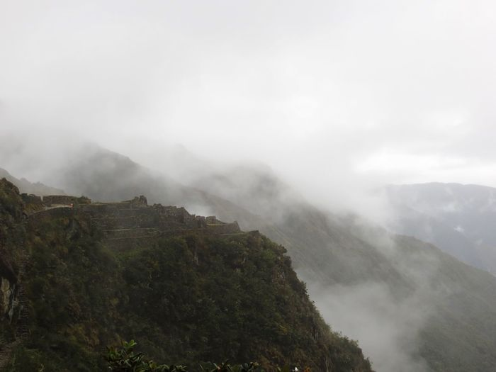 Mountain Fog Beauty In Nature Nature Mist Foggy Weather Scenics No People Day Outdoors Tranquility Tranquil Scene Landscape Hazy  Sky Tree Peru Inca Trail Inca Ruins Adventure