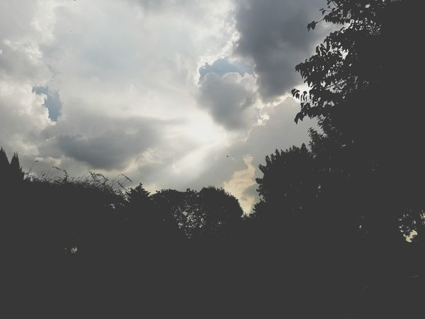 Sun Sunlight Sky Nature Tree No People Beauty In Nature Outdoors Color Lautaro Aguirre Canon PowerShot SX60HS J7camera Blackandwhite Photography Byw Grey Nubes Rayo De Sol Silhouette