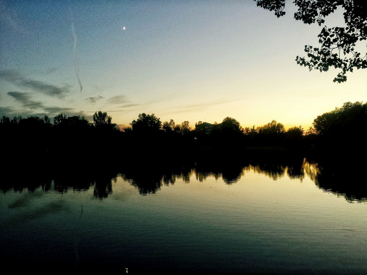 reflection, tree, water, lake, silhouette, tranquil scene, nature, sunset, beauty in nature, tranquility, scenics, sky, no people, outdoors, standing water, waterfront, growth, day