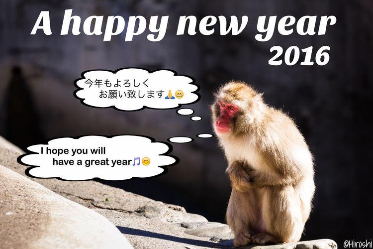 New Year's card New Year's Card NewYear EyeEm Gallery EyeEm Best Edits Tadaa Community EyeEm Best Shots EyeEmBestPics Animals Monkey ETO Japan