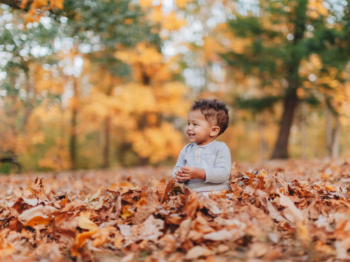 Cute smiling boy sitting on autumn leaf in forest